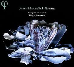 Philippe Herreweghe / Collegium Vocale / Collegium Vocale Orchestra - Johann Sebastian Bach: Motetten album download
